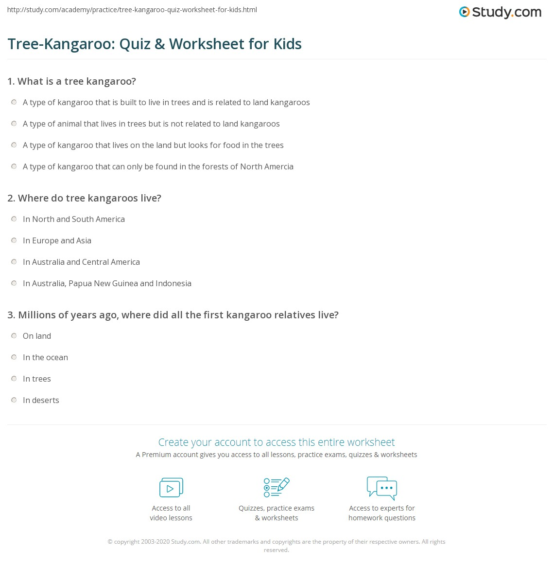 Tree Kangaroo Quiz Amp Worksheet For Kids