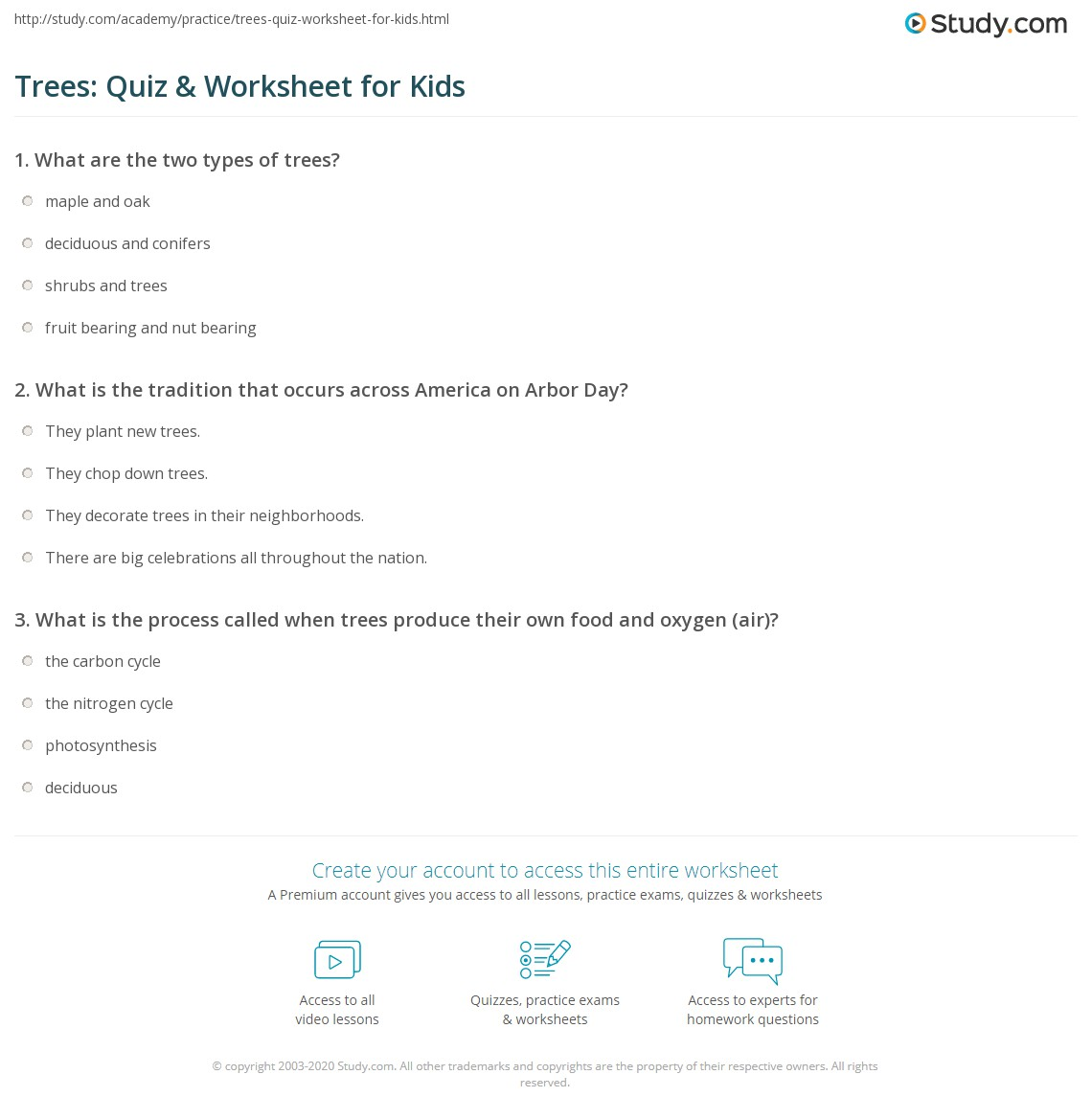 Trees Quiz Amp Worksheet For Kids
