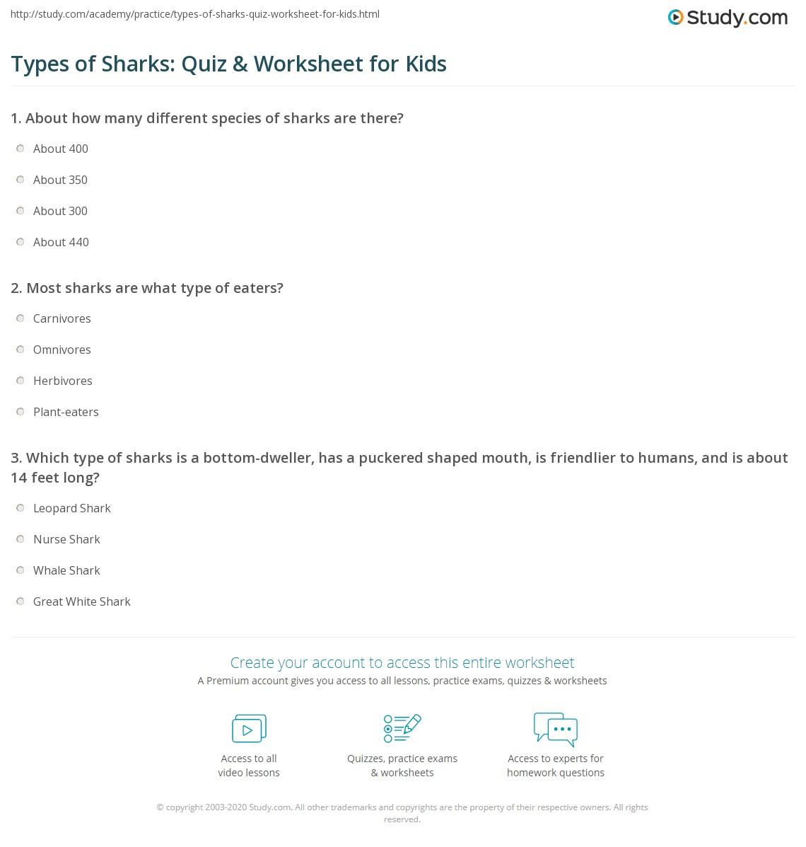 Types Of Sharks Quiz Amp Worksheet For Kids