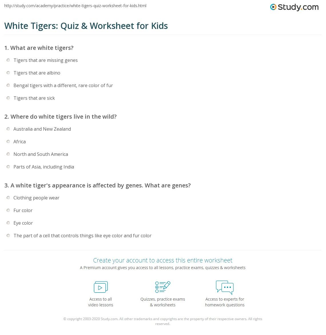 White Tigers Quiz Amp Worksheet For Kids