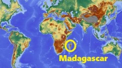 Image result for images for study in madagascar