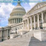 Legislative Branch Lesson For Kids Definition Facts Video Lesson Transcript Study Com