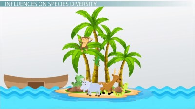 Island Biogeography: Theory, Definition & Graph - Video ...