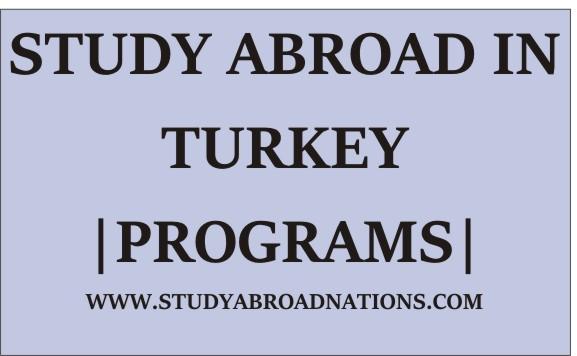 study abroad programs in turkey,study abroad in turkey