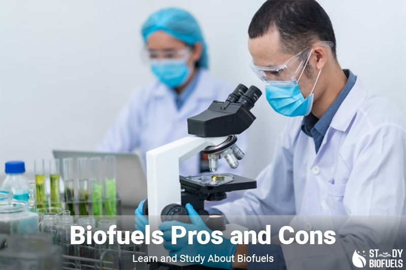Biofuels Pros And Cons >> Biofuels Pros Cons 8 Biofuels Pros And Cons You Must Know