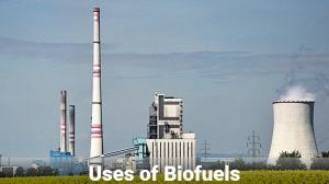 use-of-biofuels