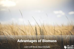 advantages of biomass