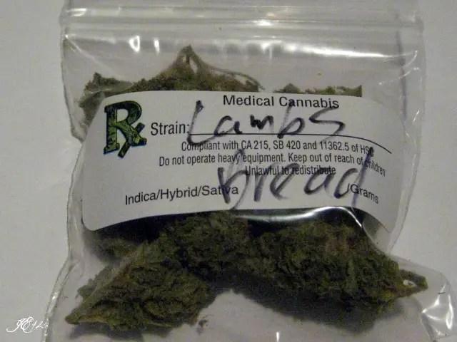 Lamb's bread weed