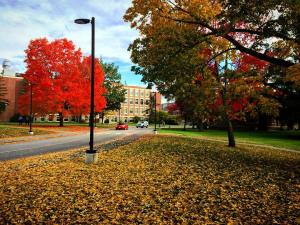 University of Maine Campus; Orono, Maine