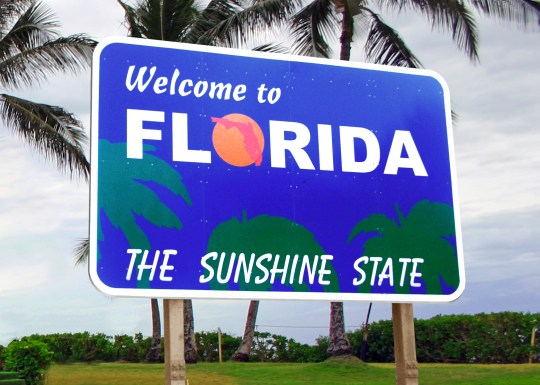 Image result for images of florida