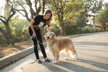 Wag!, the Best App of the Century, Hooks You Up with Pups and Cash