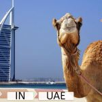 UAE VAT Important Definitions and their meaning