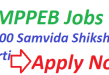 MPPEB Recruitment 2019