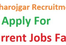 Get all info of Maharojgar Recruitment 2019-20 Notification Current Jobs Fair apply Maharojgar Recruitment 2019 & Maharojgar Jobs Vacancy