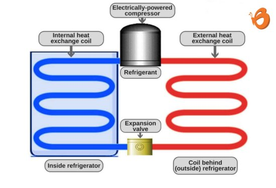 How does a refrigerator work How the fridge works