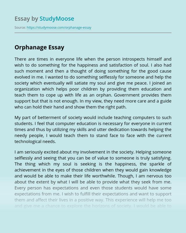 Orphanage Free Essay Example