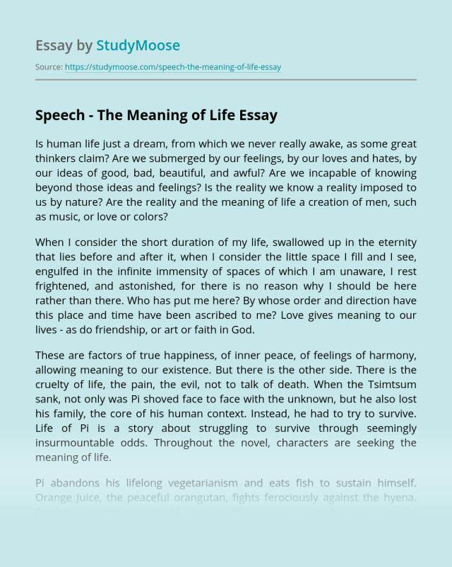 What Is The Meaning Of Life Essay  Know It Info