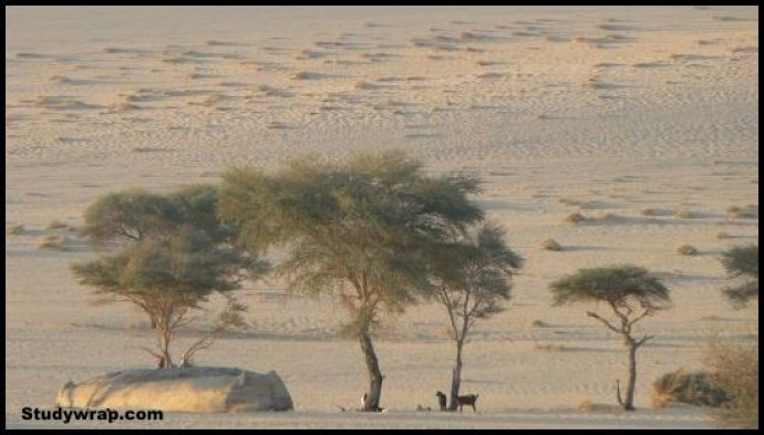 Desertification, effects of Desertification, Problems of Indian Soils, Soil Erosion