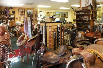 Choosing horse riding equipment can be confusing