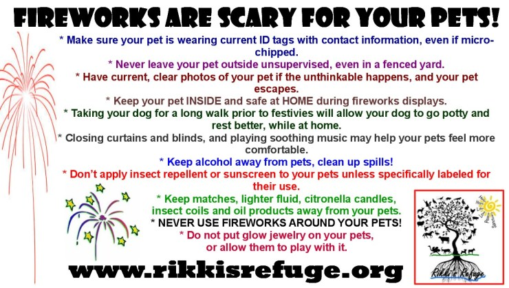 Noise phobia: fireworks are scary for your pets