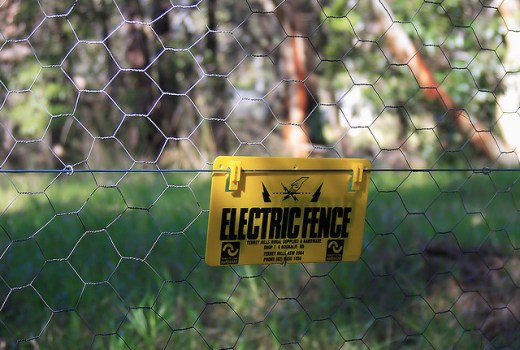 Maintaining an Electric Fence