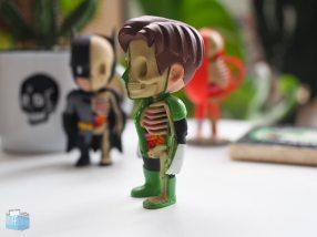 Green Lantern XXRay Series
