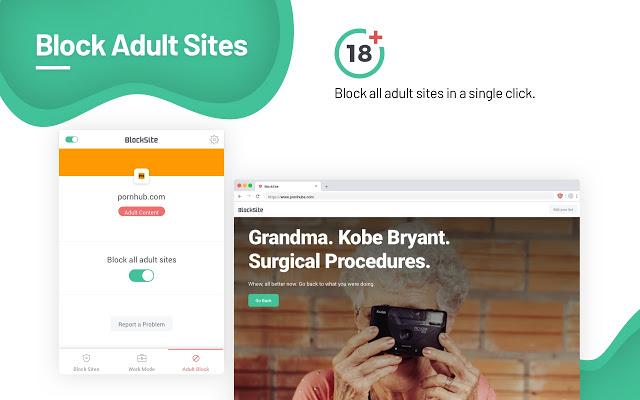 Adult site blocking