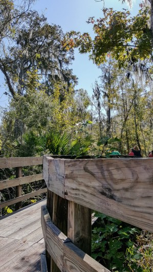 Get out of the city and into nature during your trip to New Orleans