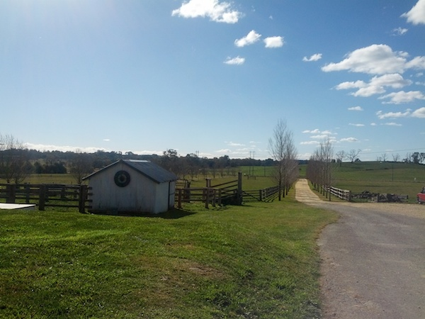 Discovering Bowral in New South Wales