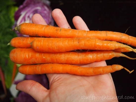 carrots as part of bok choy recipe: slaw