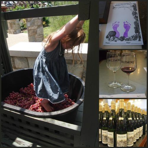 biltmore review: wine