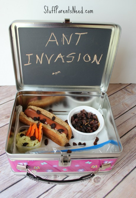 ant invasion bento box
