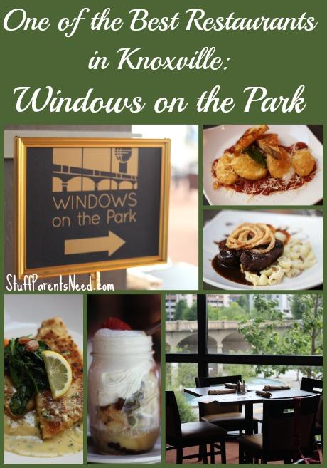 holiday inn world's fair park 5