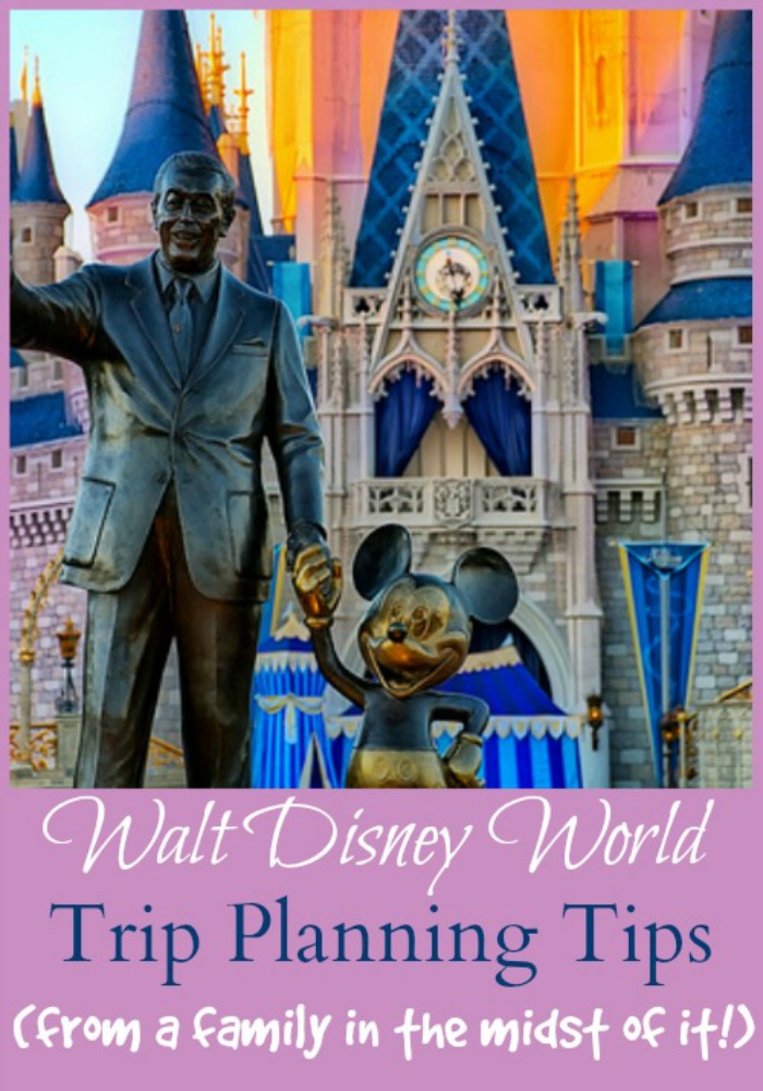 walt-disney-world-vacation