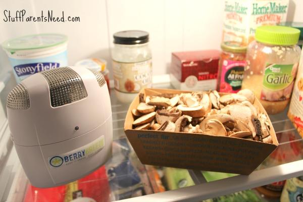 berrybreeze in refrigerator