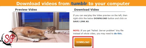 download tumblr videos online