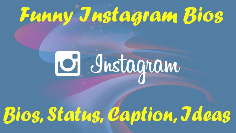 funny instagram bios for profile