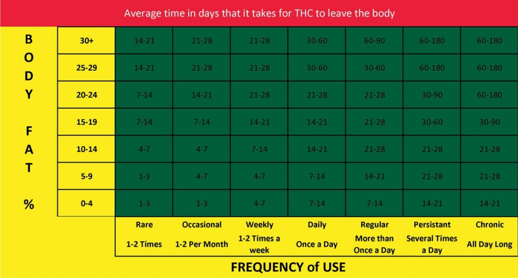 how long does thc stay in your system calculator