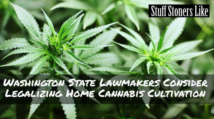 Washington Home Cultivation