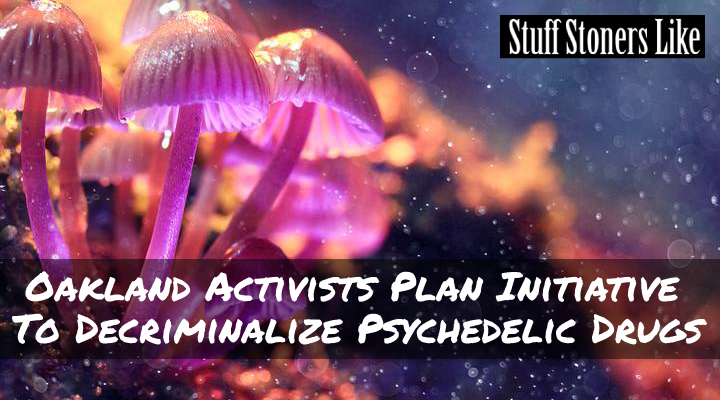 Oakland California residents could possibly see a future ballot initiative to decriminalize psychedelic drugs. That is if a coalition of activist groups known collectively as Decriminalize Nature is successful.