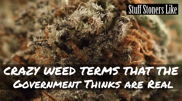 CRAZY WEED TERMS-this dope urban dictionary that lists every bit of weed slang ever uttered was created by none other than the Office of National Drug Policy.
