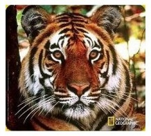 National Geographic Bengal Tiger Mousepad