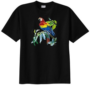 colorfull parrot t-shirt
