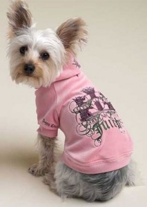Small Dog Juicy Hoodie