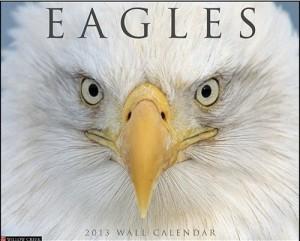 Bald Eagles 2013 Wall Calendar
