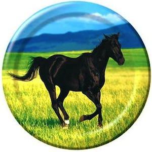 pony paper plates