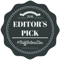 2016 Stuff Writers Like Writing Contest Editor's Pick Paul D. Bryant