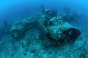 togean-b24-bomber-black-marlin-diving