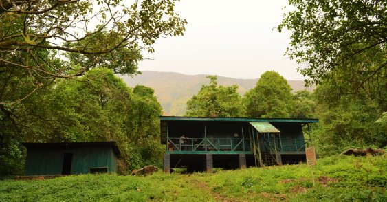 mt-cameroon-hut-one
