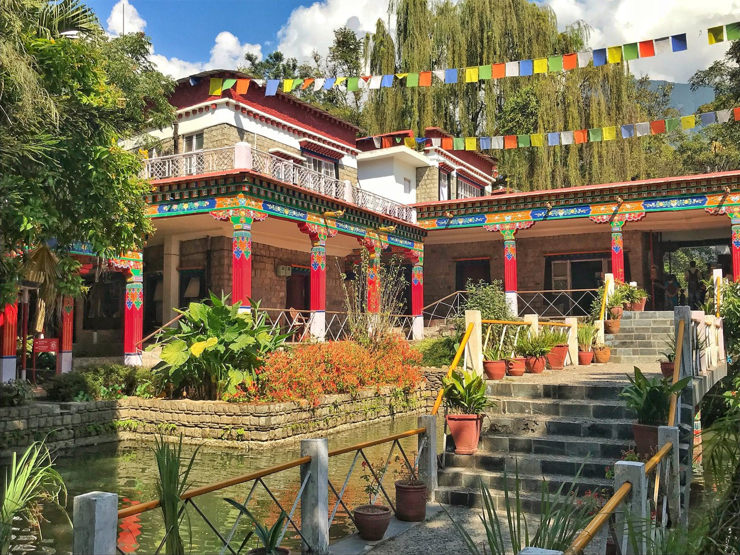 Hill Station Beauty Of Dharamsala India The Travel Blog